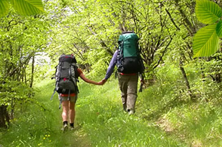 учебные фильмы про горный туризм